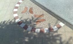 Michele Molent - Pavimenti ceramica